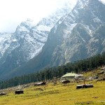 Yumthang valley 1